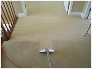 carpet hall cleaning